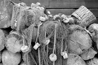 Logs and nets