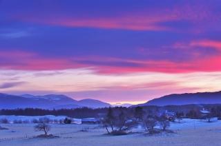 Winter Wonderland in the Cairngorms