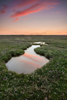 Red sky over Stiffkey Marshes