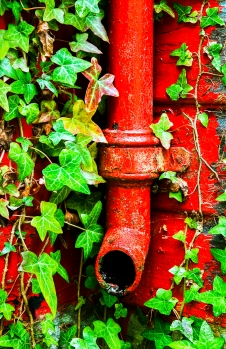 Drain pipe red and greens