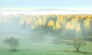 Fall morning mist near Montpelier