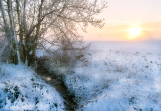 Setting sun in snowy Suffolk