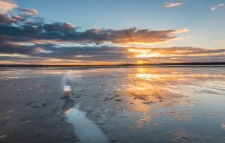 Leading lights at Findhorn