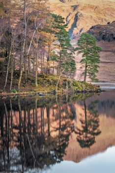 Blea tarn autumn light