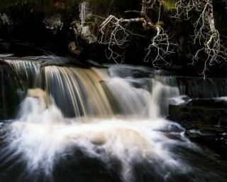 Menace of the falls