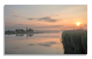 Reed sunrise
