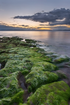 Rocky green sunset Nairn
