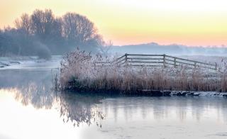 Loddon frosts