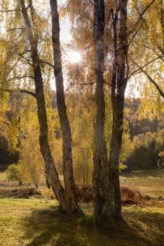 Rays at Loch Tummel