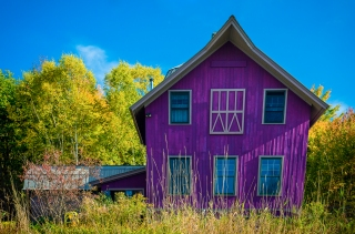 Purple Abode