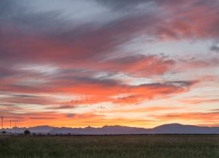 Roadside dawn Provence
