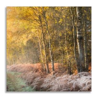 Autumn colours Bridgham
