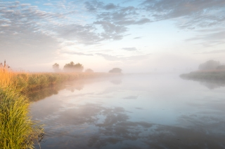 Down river mist