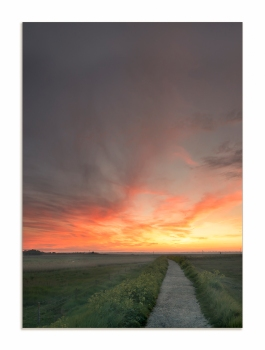 The Path Walberswick