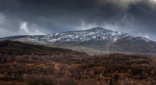 Autumn at Schiehallion