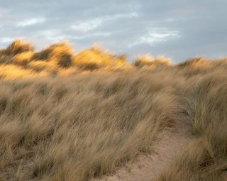 Burnham dunes light