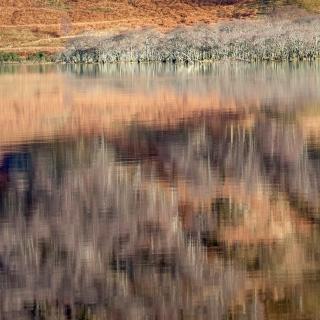 Loch Maree collage
