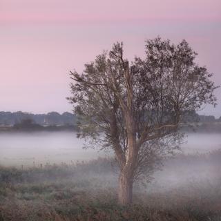 September mists