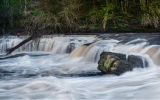 Aysgarth falls in full flow
