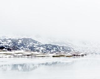 Lofoten- rainy scene