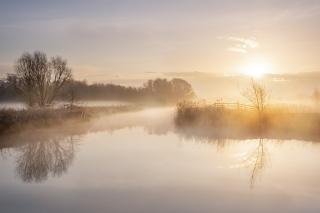 Covid sunrise