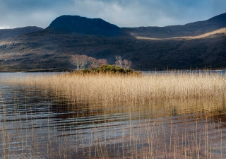 Alone in Assynt