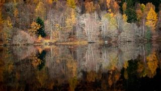 Loch Tummel art