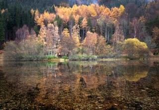Spotlight Loch Polney