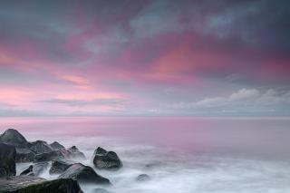 Caister pinks